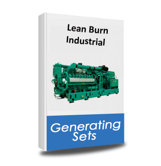 lean burn gas generator product category